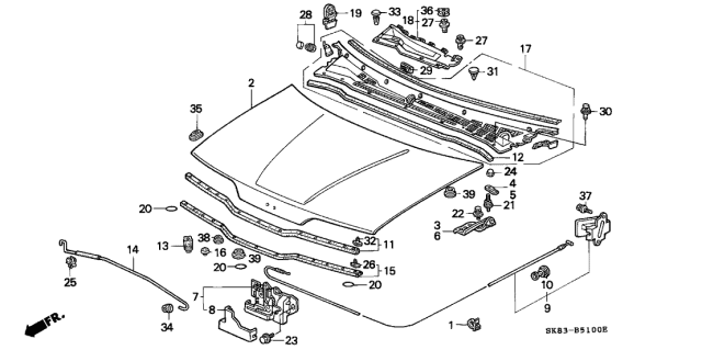 1991 Acura Integra Engine Hood Diagram